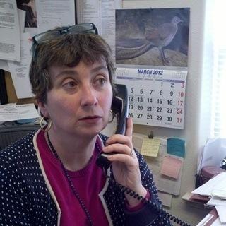 Sharon Frances Cohen