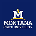 Montana State University - Bozeman Logo